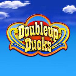 Double Up Ducks Slot